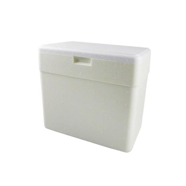 Caixa Térmica / Isopor 13 Litros - 036